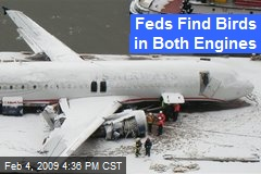 Feds Find Birds in Both Engines