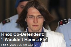 Knox Co-Defendent: 'I Wouldn't Harm a Fly'