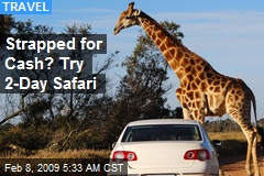 Strapped for Cash? Try 2-Day Safari