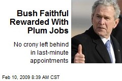 Bush Faithful Rewarded With Plum Jobs
