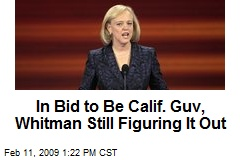 In Bid to Be Calif. Guv, Whitman Still Figuring It Out