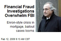 Financial Fraud Investigations Overwhelm FBI