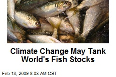 Climate Change May Tank World's Fish Stocks
