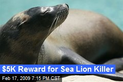 $5K Reward for Sea Lion Killer