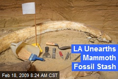 LA Unearths Mammoth Fossil Stash