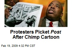 Protesters Picket Post After Chimp Cartoon