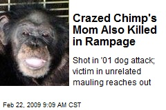 Crazed Chimp's Mom Also Killed in Rampage