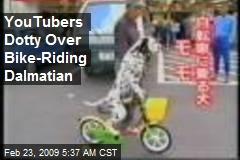 YouTubers Dotty Over Bike-Riding Dalmatian
