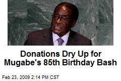 Donations Dry Up for Mugabe's 85th Birthday Bash
