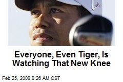 Everyone, Even Tiger, Is Watching That New Knee