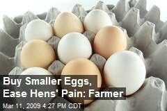 Buy Smaller Eggs, Ease Hens' Pain: Farmer