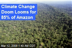 Climate Change Doom Looms for 85% of Amazon