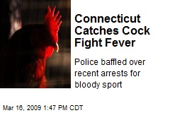 Connecticut Catches Cock Fight Fever