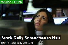 Stock Rally Screeches to Halt