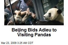 Beijing Bids Adieu to Visiting Pandas