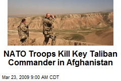 NATO Troops Kill Key Taliban Commander in Afghanistan