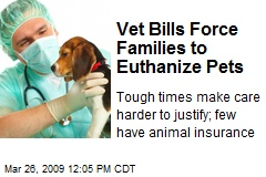 Vet Bills Force Families to Euthanize Pets