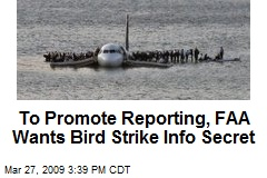 To Promote Reporting, FAA Wants Bird Strike Info Secret