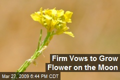 Firm Vows to Grow Flower on the Moon