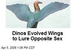 Dinos Evolved Wings to Lure Opposite Sex