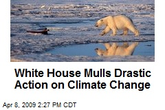 White House Mulls Drastic Action on Climate Change