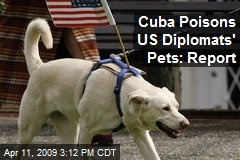 Cuba Poisons US Diplomats' Pets: Report