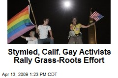 Stymied, Calif. Gay Activists Rally Grass-Roots Effort