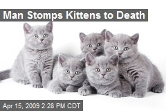 Man Stomps Kittens to Death