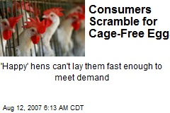 Consumers Scramble for Cage-Free Eggs