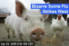 Bizarre Swine Flu Strikes West