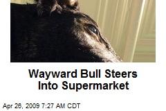 Wayward Bull Steers Into Supermarket