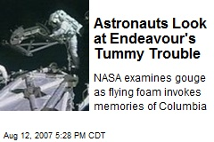 Astronauts Look at Endeavour's Tummy Trouble