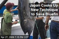 Japan Cooks Up New Technique to Save Bluefin