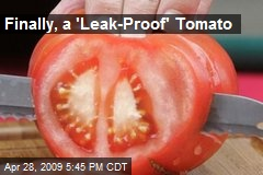 Finally, a 'Leak-Proof' Tomato