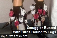 Smuggler Busted With Birds Bound to Legs