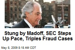 Stung by Madoff, SEC Steps Up Pace, Triples Fraud Cases