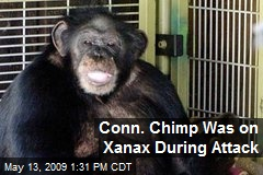 Conn. Chimp Was on Xanax During Attack