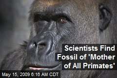 Scientists Find Fossil of 'Mother of All Primates'