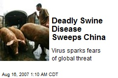 Deadly Swine Disease Sweeps China