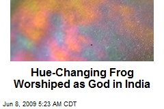Hue-Changing Frog Worshiped as God in India