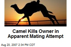 Camel Kills Owner in Apparent Mating Attempt