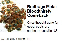 Bedbugs Make Bloodthirsty Comeback