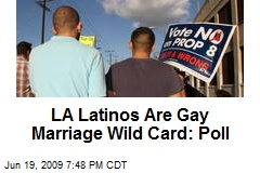 LA Latinos Are Gay Marriage Wild Card: Poll