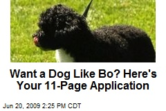 Want a Dog Like Bo? Here's Your 11-Page Application