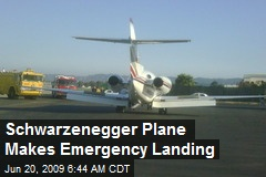 Schwarzenegger Plane Makes Emergency Landing
