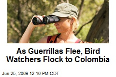 As Guerrillas Flee, Bird Watchers Flock to Colombia
