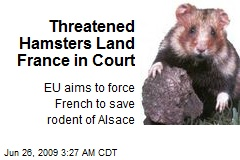 Threatened Hamsters Land France in Court