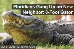 Floridians Gang Up on New Neighbor: 8-Foot Gator