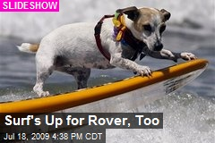 Surf's Up for Rover, Too