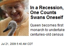 In a Recession, One Counts Swans Oneself